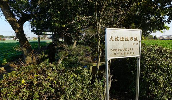 茨城県境町の蛇池・大蛇伝説